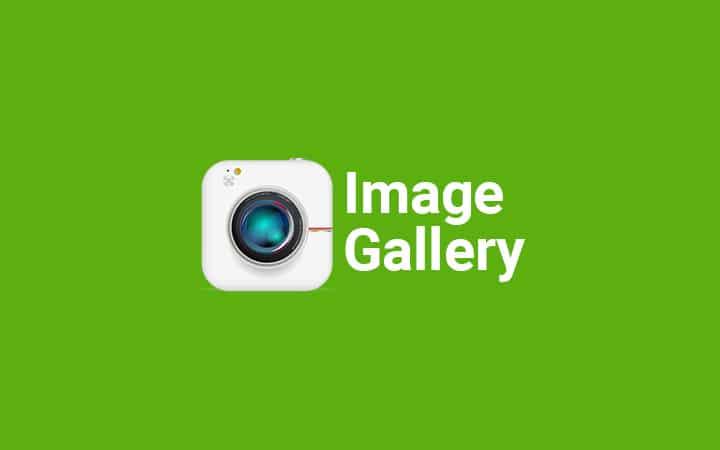 Image Gallery Modal Box