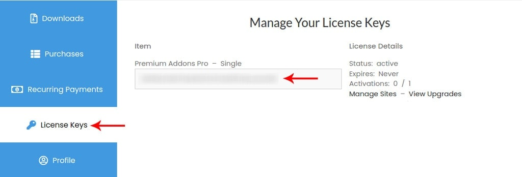License Keys Tab for Premium Addons for Elementor