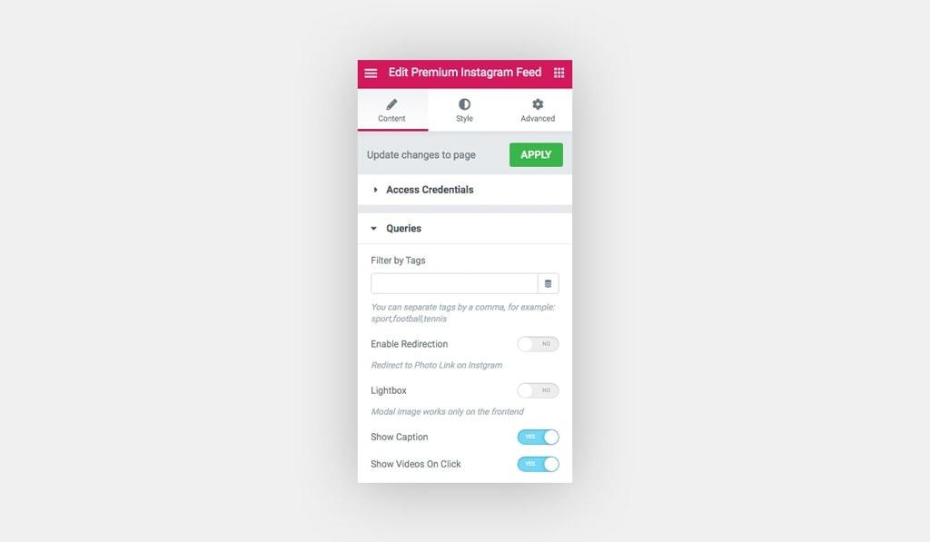 Screenshot Shows a Premium Instagram Feed Widget Queries Settings.